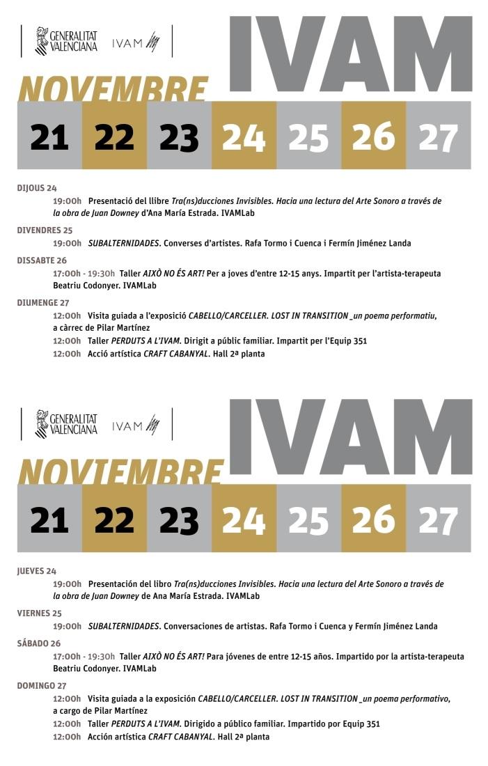 ivam-21-a-27-nov-2016