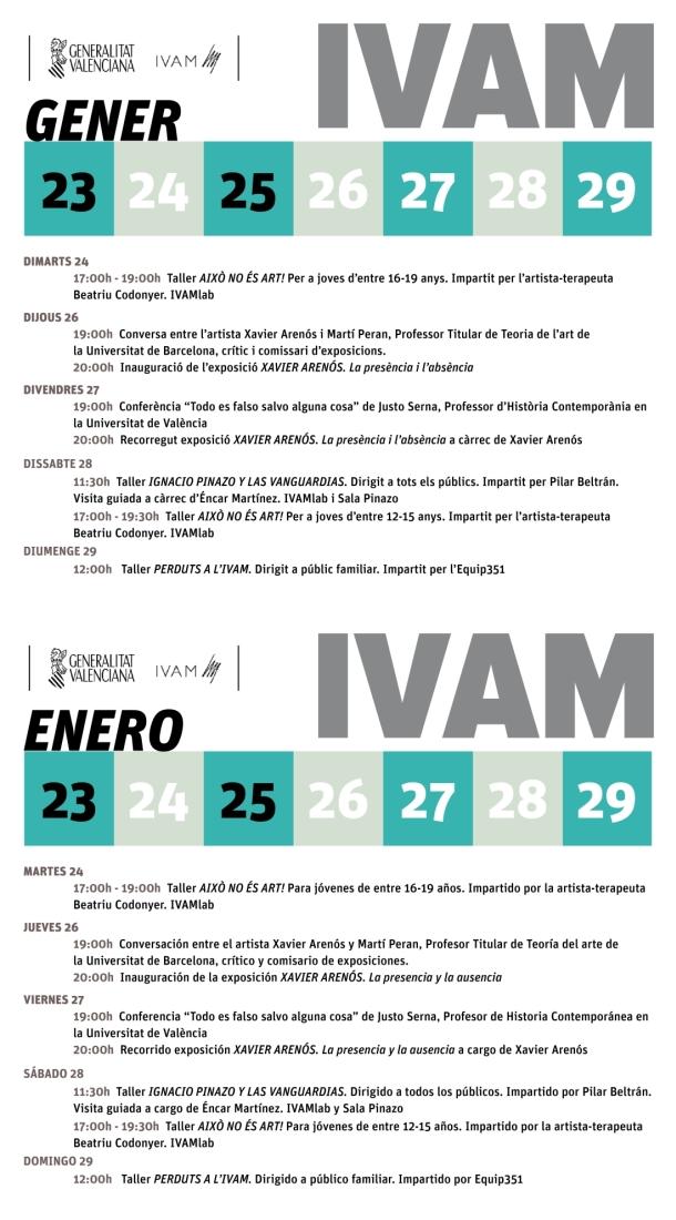 IVAM semana del 23 al 29 enero 2017